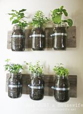 2. 材料費はセール品の観葉植物(1つUS1ドル余り)と、パイプクランプ(2つUS2ドル余り)と肥料を合わせて、全部でUS20ドル以下で収まりました。