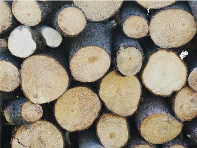 3.間伐材を使った国産材料は、<br>いいことだらけ